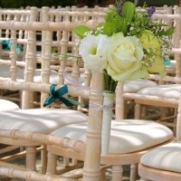 Lime Wash Chiavari Chair