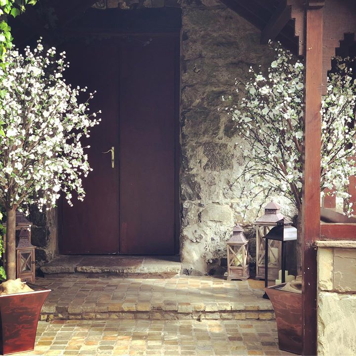 Say with a Blossom tree. Our gorgeous trees create a warm and pretty welcome and a great feature for your all important photos x #weddingdecor #blossomtrees #galgormweddings #weddingceremonydecor #wed...